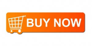 Buy Gree AC Online